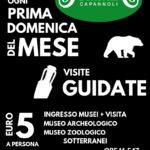 visite guidate al mu7seo zoologico, museo archeologico e ai sotterranei ogni prima domenica del mese alle ore 16 e alle ore 17