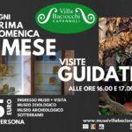 visite guidate ai musei di villa baciocchi e ai sotterranei