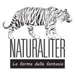 inizio corso tassidermia tenuto dal primo maestro artigiano in italia presso villa Baciocchi Capannoli